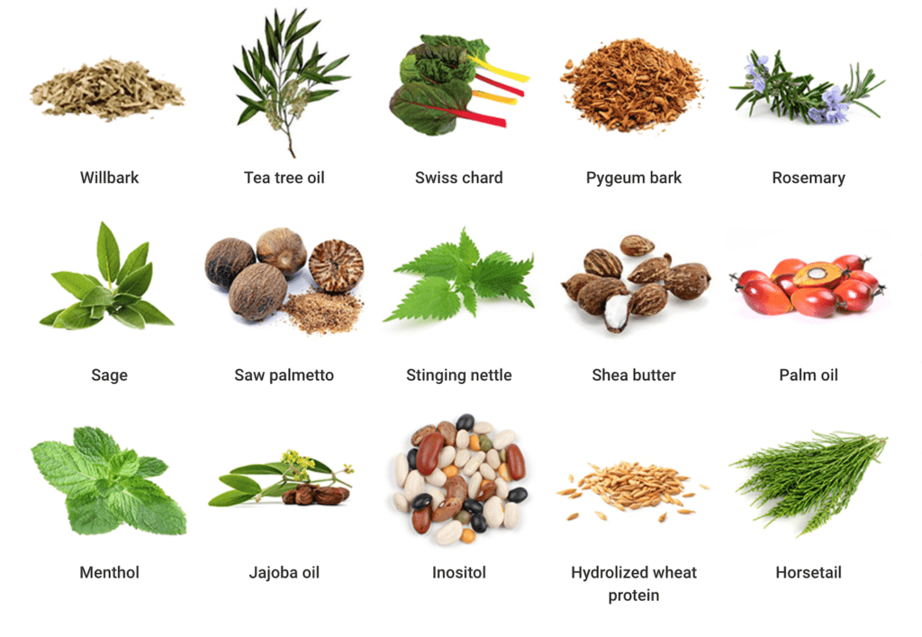 15 natural ingredients